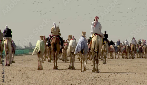 Abstract, blurry, bokeh background, image for the background. Camels and riders.