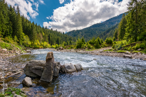 Poster Donkergrijs boulders on cascade of the forest river. beautiful landscape in mountains on a bright day. lovely time spent while travel Carpathians
