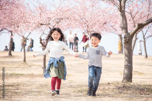 Foto op Canvas Kersen 桜と笑顔の子供