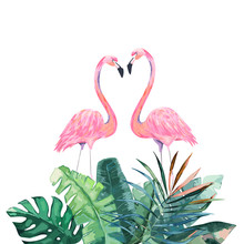 Couple Pink Flamingos. Tropical Print For Invitation, Birthday, Celebration, Greeting Card. Vector Illustration