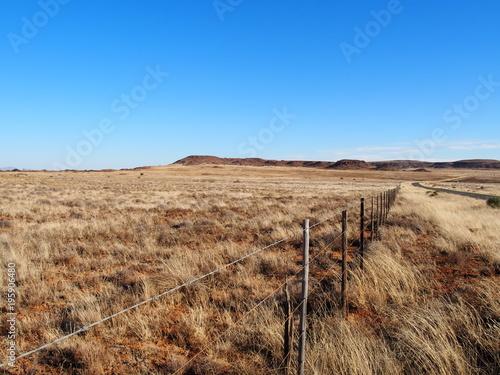 Foto op Plexiglas Zuid Afrika Oudtshoorn in Südafrika