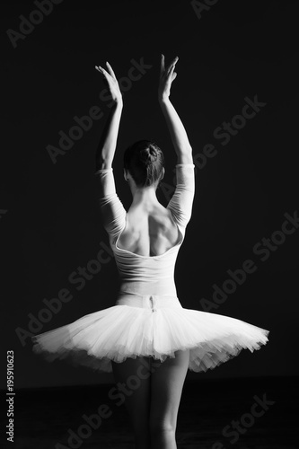 Fotografie, Obraz  Young beautiful ballerina is posing in studio