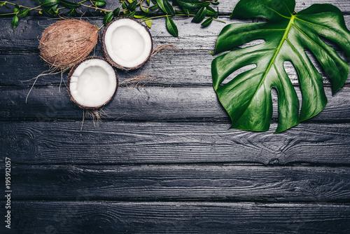 zieleni-liscie-monstera-zasadzaja-dorosniecie-w-dzikim-tropikalna-lasowa-roslina-na-czarnym-tle-kokos-jest-bialym-miazszem