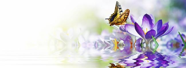 Panel Szklany Łąka Wiese mit zarten Blumen im Frühling