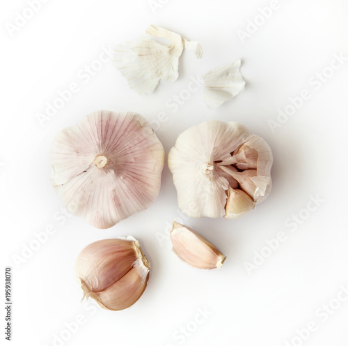 garlic on white background Wallpaper Mural