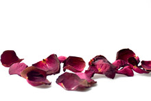 Dry Petal Of Rose Isolated On ...