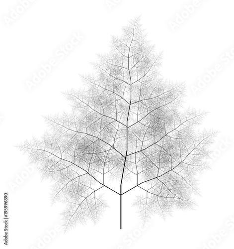 Valokuva  Flat  Computer Generated Self-Similar L-system Branching Tree Fractal  - Generat