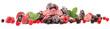 canvas print picture - Beeren gefroren - Panorama