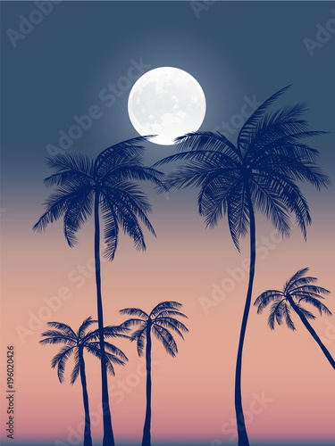 Summer california tumblr backgrounds set with palms, sky and sunset Wallpaper Mural