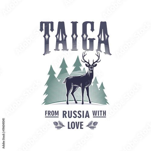 Fototapeta Тайга, Пятнистый Олень на фоне елей, Россия, любовь, иллюстрация, вектор obraz na płótnie