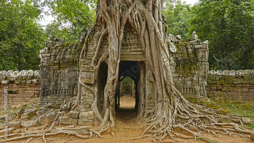 Sacred Angkor Wat temple small passage surrounded by tree roots in Cambodia Tablou Canvas