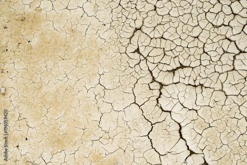 Fotografie, Obraz  durch Wassermangel entstandene Risse im Boden