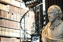 Bust In Library