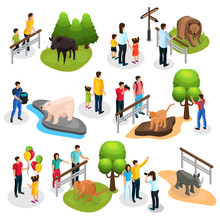 Isometric Zoo Elements Collect...