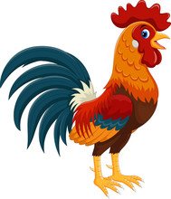 Happy Rooster Cartoon Isolated...