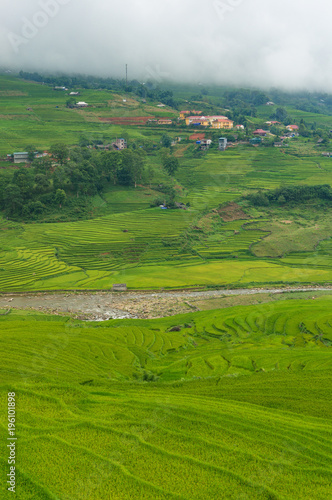Leinwand Poster  Green rice terraces of rural Vietnam