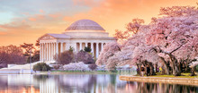 Jefferson Memorial During The ...