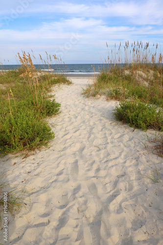 Fotografia, Obraz  Summer afternoon marine landscape with way to the atlantic ocean beach through sand dunes at the Huntington Beach State Park, South Carolina, USA, myrtle Beach area
