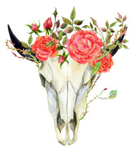 Watercolor Buffalo Skull