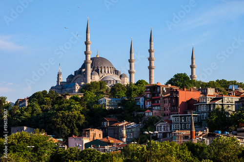 Suleymaniye Mosque and Traditional Houses in Istanbul Poster