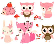 Cute Woodland Animals In Pink ...