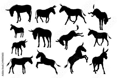 Leinwand Poster Donkey Animal Silhouettes Set