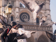 Tourists Feeding Pigeons In Th...