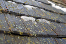 Old Shingles Wooden Roof With Moss.
