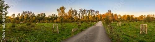 Naturpark Bislicher Insel Bei Xanten Im Herbst Buy This Stock