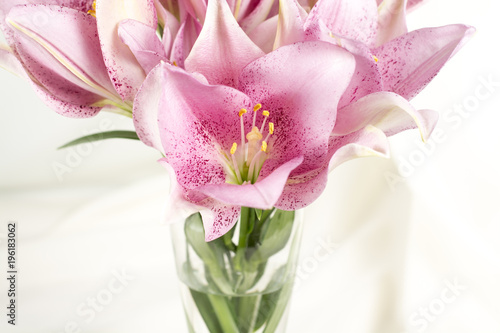 Leinwand Poster Beautiful lily pink or purple in glass vase on white fabric
