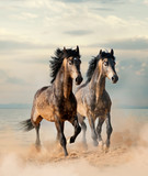 Two beautiful horses running by the sea - 196205824