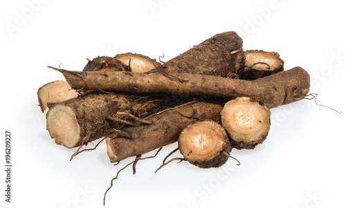 Fotografía Burdock roots isolated on white background