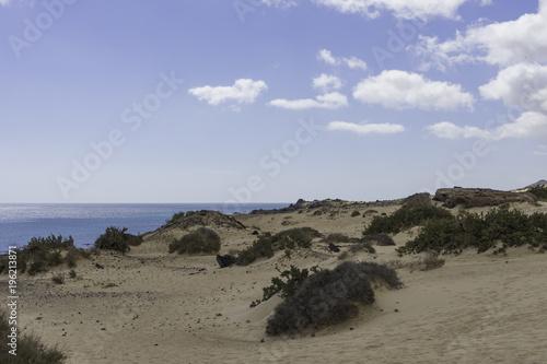 Fotobehang Grijs Landscape Dunes Of Canary Islands, Spain.
