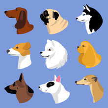 Dogs Icons In Flat Style. Vect...