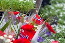 Norwegian Constitution Day Is ...