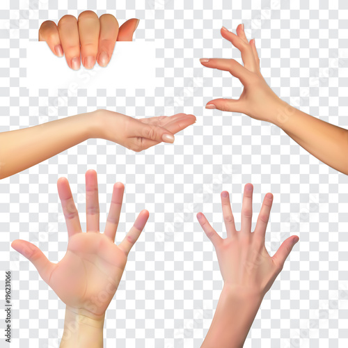 Realistic 3D Silhouette of  hand on White Background Fototapet