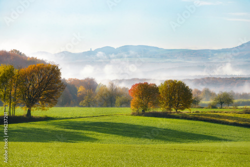 Foto auf Gartenposter Landschappen Fields and trees in autumn, early morning mist arose from the Rhine valley, Westerwald, view onto the hills of the Eifel