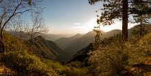 Kings Canyon Sequoia National ...