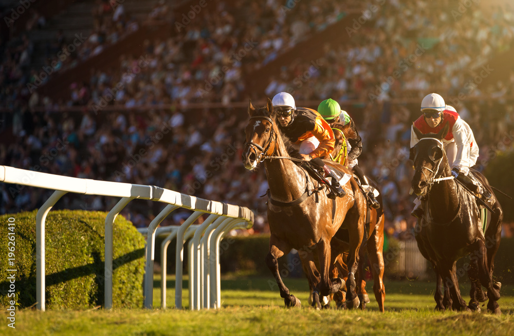 Fototapety, obrazy: Two jockeys during horse races on their horses going towards finish line. Traditional European sport.