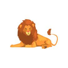 Formidable Lion Lying, Wild Pr...
