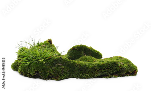 Spoed Foto op Canvas Natuur Green mossy hill and grass isolated on white background and texture