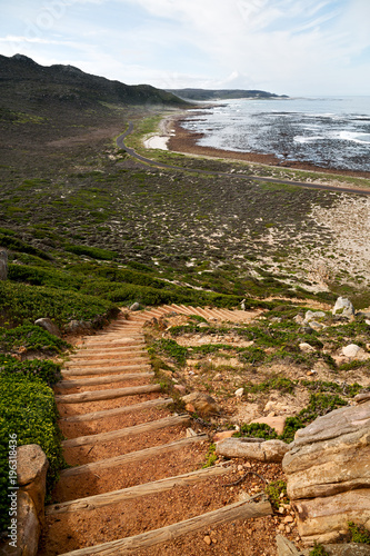 Fotografering  in south africa coastline    near the cape of good hope