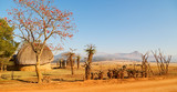 Fototapeta Sawanna -   in swaziland   wildlife  nature   reserve