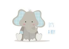 Nascita Bambino, Baby Elephant