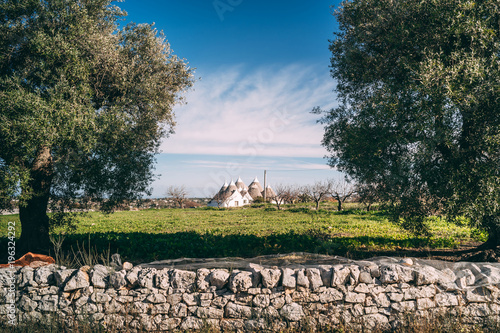 Photo Landscapes of Puglia