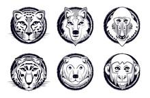 Wild Animals Heads Cartoon On Black White Vector Illustration Graphic Design