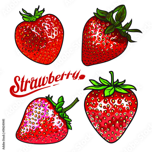 vector strawberry set ripe red strawberry realistic drawing vector illustration isolated on white background strawberry with green leaves on white background botanical illustration buy this stock vector and explore similar vectors vector strawberry set ripe red