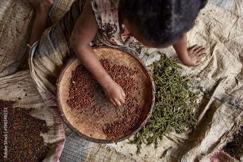 Türaufkleber Afrika Mädchen sortiert Pfefferkörner