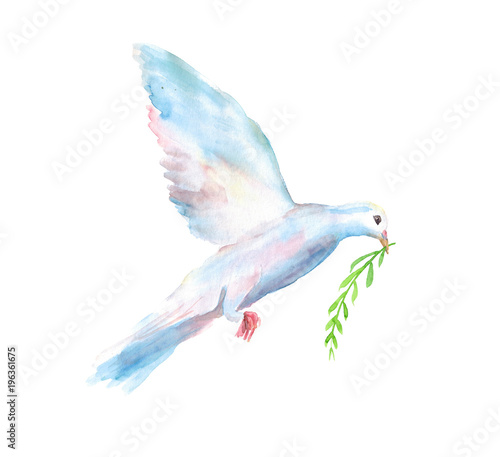 Carta da parati Watercolor hand drawn sketch illustration of white dove of the world with a gree