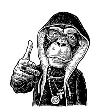 Monkey Raper Dressed In Hoodie...